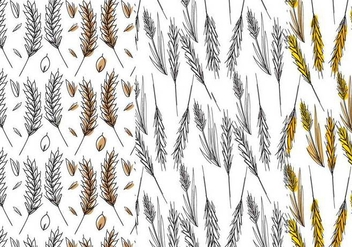 Wheat Stalk Pattern Set - vector #364269 gratis