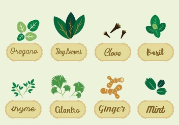 Free Herbs Vector - Free vector #364699