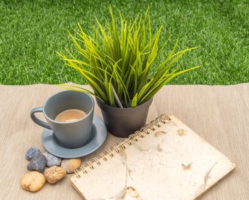 Cup of coffee, green plant and notebook - image gratuit #365609