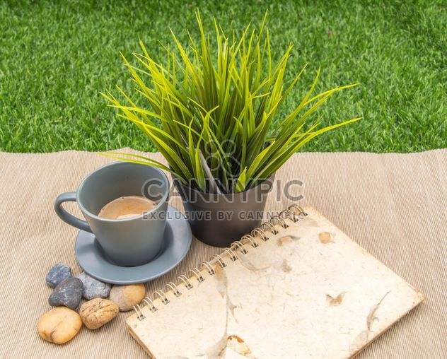 Cup of coffee, green plant and notebook - Free image #365609