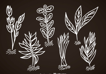 Spices Vector Set - vector #368329 gratis