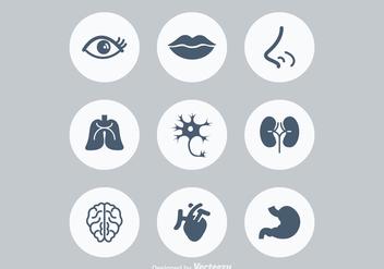 Free Human Anatonomy Vector Icons - Free vector #372569