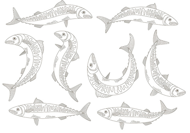 Mackerel icons - vector gratuit #373589