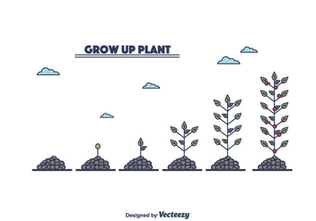 Grow Up Plant Vector - Free vector #375379