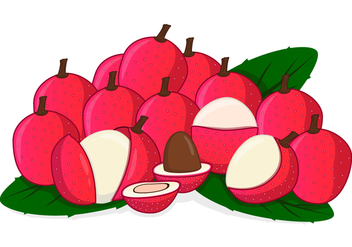 Fresh Sweet Lychee - vector #376839 gratis