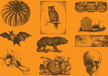 Halloween Drawings - Free vector #377519