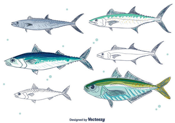Mackerel Vector - Free vector #381879