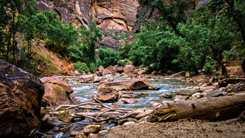 The Virgin River - image gratuit #382409