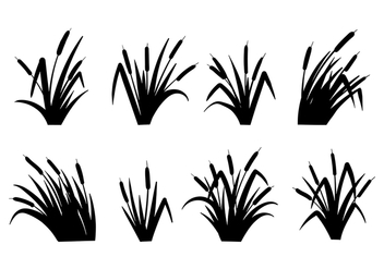 Cattails Vector Black and White - Free vector #383659