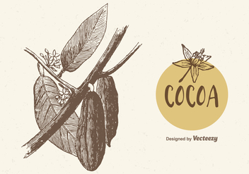 Free Cocoa Branch Vector Illustration - Free vector #385539