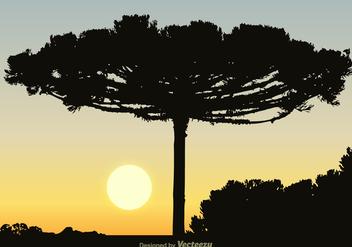 Free Black Araucaria Vector Background - Free vector #385579