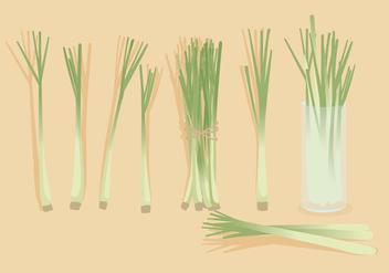 Lemongrass Vector - бесплатный vector #385849