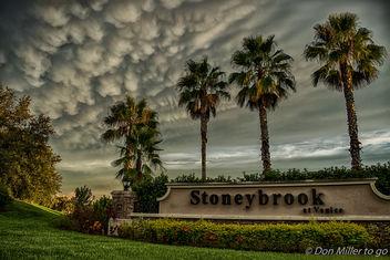 My Florida - Free image #385919