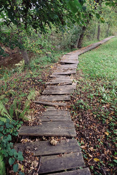 Broken pathway - Free image #388659