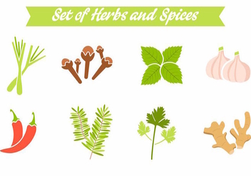 Free Spices and Herbs Vector - vector gratuit #389069