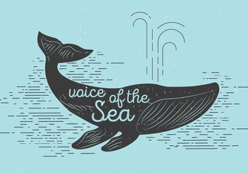 Free Vector Whale - Free vector #391019