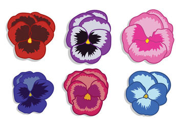 Pansy Vector - Free vector #391889