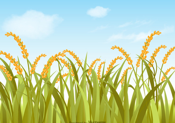 Free Vector Rice Field Illustration - Free vector #392339