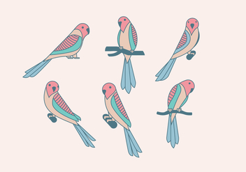 Budgie Cute Vector - Free vector #393109