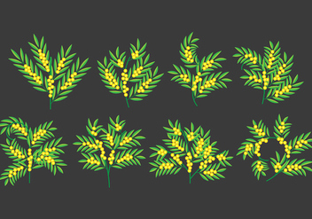 Mimosa icons - Free vector #394419