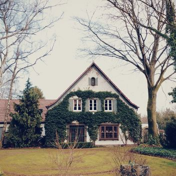 House covered with green ivy - image #394809 gratis