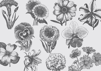 Vintage Flowers - бесплатный vector #395669