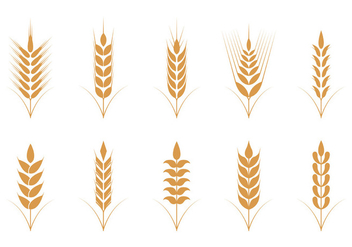 Oats Vector Icons - бесплатный vector #398409