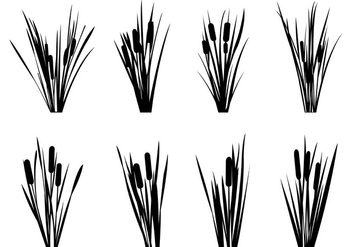 Set Of Reeds Silhouettes - Free vector #398629