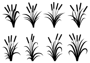 Cattails Silhouette Vectors - Free vector #399169