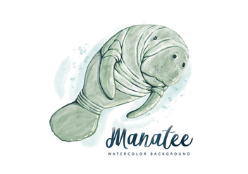 Free Manatee Watercolor Background - Free vector #403589