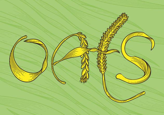 Free Oats Vector Illustration - бесплатный vector #405389
