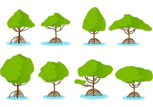 Free Mangrove Vector - Free vector #406089