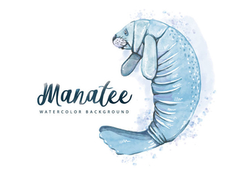 Free Manatee Watercolor Background - Kostenloses vector #407329