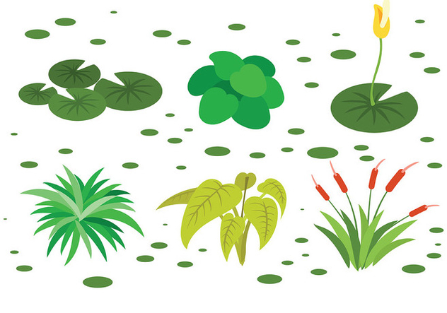 Free Swamp Icons Vector - Free vector #408469