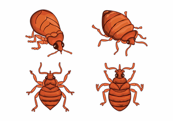 Bed bug cartoon character illustration vector - Free vector #412639
