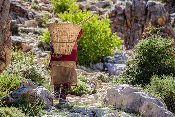 Dolpa Woman - Free image #416259