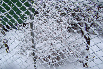 Turkey (Istanbul) Fence in snow - Free image #416449