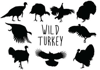 Wild Turkey Silhouette - Free vector #419239