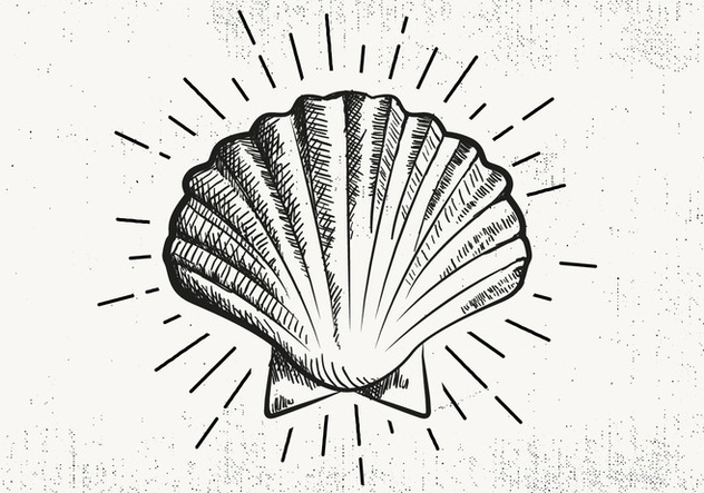 Free Hand Drawn Shell Background - Free vector #423129