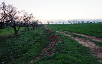 Buscando el horizonte - Kostenloses image #423409