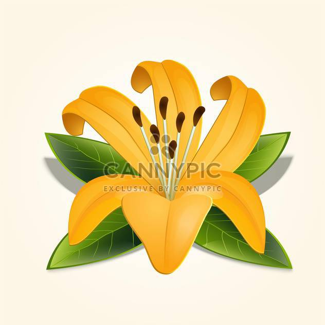 Beautiful vector illustration of yellow lily flower with green leaves on beige background - Free vector #126299