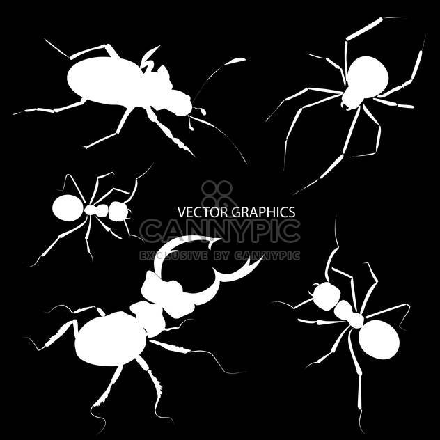Vector illustration of white bugs silhouettes on black background - Free vector #126599