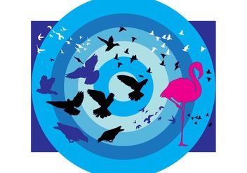 Birds Collection - Free vector #138889