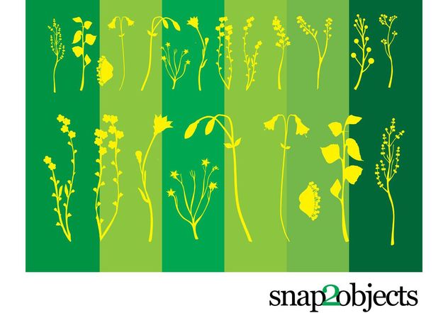 Flower Plants - Free vector #141739