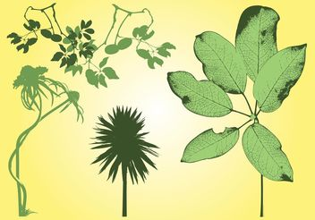 Free Plants Stock - vector #144599 gratis