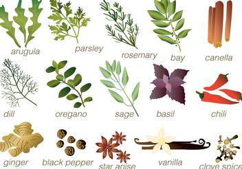 Vector Spices - vector #145569 gratis