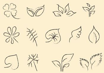 Sketchy Leaf Vector Set - Free vector #145579