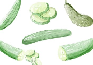 Watercolor Cucumber Vectors - vector gratuit #145689