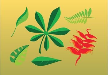 Leaves Cartoons - vector gratuit #145729