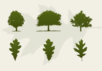 Oak Trees And Leaves Vector Silhouettes - Free vector #145919